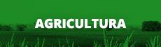 Técnico Integrado em Agricultura
